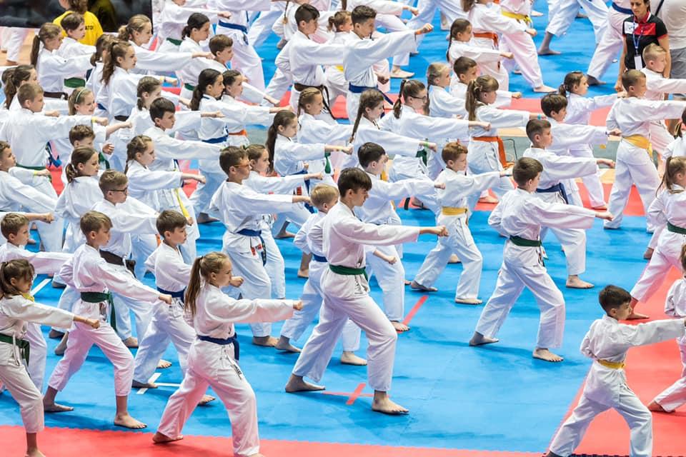 Ogromny sukces. XIX Ogólnopolski Puchar Dzieci w Tradycyjnym Karate-do, Wrocław 15.06.2019 r.